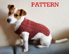 Knitting Pattern Dog Sweater Pattern Knit Dog by TheMailoDesign