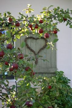 I love the heart on the wall with limbs of apples all around, it is so neat. Just like going down Inspiration Lane!!
