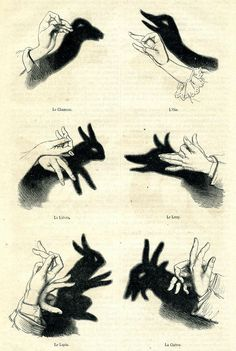Hand Shadows I by Shadow Art, Shadow Play, Shadow Puppets With Hands, Hand Shadows, Shadow Theatre, Cut Out Shapes, Hand Puppets, Hand Art, Sign Language