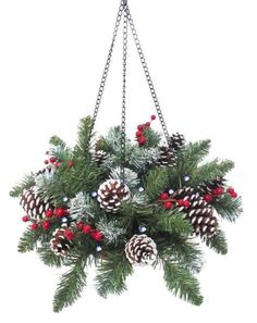 hanging baskets for winter - Google Search More