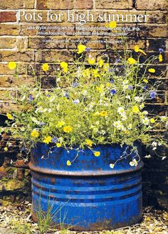 Summer pot planting: Rather like this mini-meadow planting.