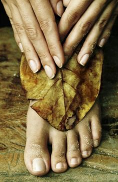 Homemade Herbal Remedies For Arthritis | Health & Natural Living