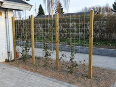 HORTUS Rio-net espalier galvaniseret 90 x 180 cm Diy Fence, Backyard Fences, Backyard Landscaping, Fence Ideas, Backyard Ideas, Diy Trellis, Garden Trellis, Privacy Trellis, Patio Privacy