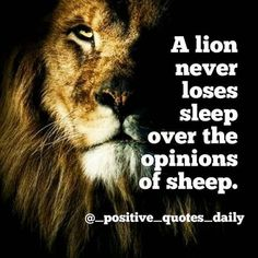 A never loses sleep over the opinions of Quotes To Live By, Life Quotes, Don't Judge, Motivationalquotes, Quote Of The Day, Life Lessons, Positive Quotes, Qoutes, Lion