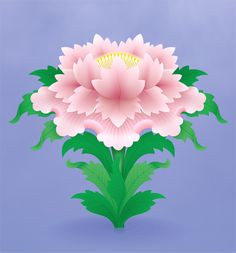 The White Lotus The lotus symbolizes purity of the body, speech and mind and the blossoming of wholesome deeds in blissful liberation. The fully-opened lotus represents the fully-awakend mind and the flower bud represents Buddha-potential.