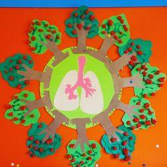 Orman haftası ağaçlar bizim doğal ciğerlerimizdir