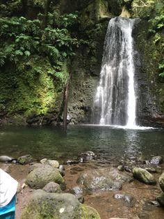 Cascata naturale nel bosco