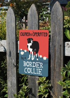 """Owned Operated by a Border Collie - Aluminum Sign 9X12"""" on Etsy, $25.95"""
