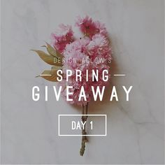 DAY ONE IS NOW CLOSED!  The winners are:  @kristincooley @jaimeclapphotoalaska @melissa_kilner_photo Email us at service(at)designaglow.com to claim your prize!  Didn't win today? No worries, we have 3 more days of giveaways….and they keep getting better!!