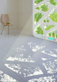 Wow! Plant Window by Jianxing Cai, Chao Chen, Qi Wang & Jiang Wu