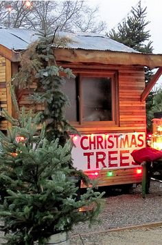 christmas tree shopping is the best have little cabins located throughout the tree farm with activities for families - Christmas Tree Farms For Sale