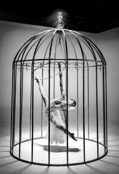 a golden cage hung in the air, no escape, no run, a round circle of dreams and thoughts never ending, a lifetime of dance and fantasy for one solely watcher.