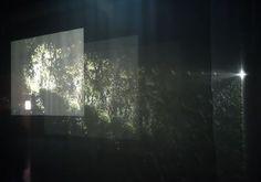 Bill Viola : The Veiling, 1995 [Les Voiles]. 2 projections vidéo en couleur depuis les extrémités opposées d'une grande salle obscure, à travers 9 grands voiles suspendus au plafond ; son mono amplifié sur 2 canaux, 4 hauts parleurs. 3,50 x 9,40 x 6,70 m ; 30 minutes. Performeurs : Gary Murphy, Lora Stone. Studio Bill Viola.