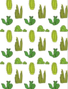 Baines and Fricker -cactus print