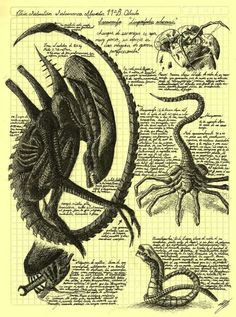 Aliens. I love all of these movies. Great art work too!