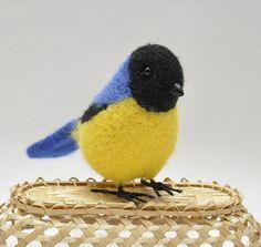 yellow blue bird