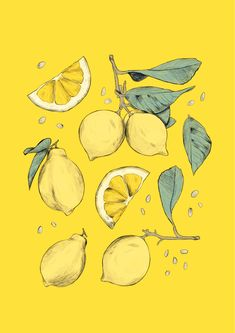 """If life gives you lemons, make lemonade."" - by illustrator Emma Martschinke - #illustration #illustrator #drawing #vegan #fruits #fruit #lemon #draw #sketch #art #artist"