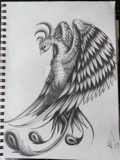 I love the graceful femininity in the head & face of this one. -Amber......Pheonix Tattoo Design by scribilitary