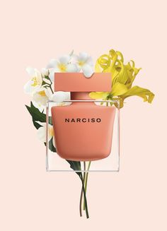 Narciso (Eau de Parfum Ambrée) is a new perfume by Narciso Rodriguez for women and was released in The scent is floral-sweet. New Fragrances, Fragrance Parfum, Narciso Rodriguez For Her, Sephora, Art Of Seduction, Cosmetics & Perfume, Ambre, Confident Woman, Shiseido