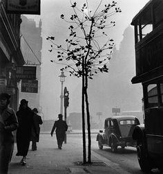 Wolfgang Suschitzky London 1937