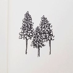 Tree sketches for a logo   Instagram: @themelodyh