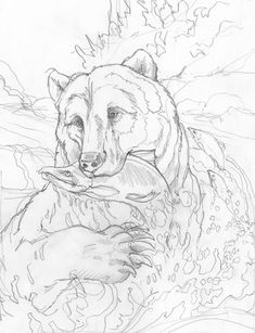 Animal Sketches, Animal Drawings, Art Sketches, Art Drawings, Wood Burning Patterns, Wood Burning Art, Animal Coloring Pages, Coloring Book Pages, Bear Drawing