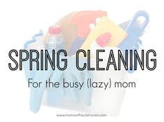 If you are looking to get your home organized and organized quickly, this is a great read! www.momswithoutanswers.com