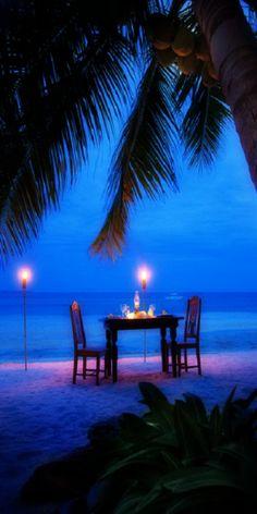 ~ dining  by moonlight ~