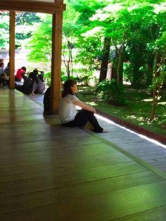 度々行きたい旅。: 京都観光:涼を感じる京の旅・「緑蔭」龍安寺にて