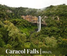 Iguazu Falls isn't the only magnificent waterfall in Brazil! Caracol Falls (also called Cascata do Caracol) is located in Caracol State Park and is a popular tourist destination. A cable car and viewing platform give visitors multiple ways to take in the incredible natural scenery. #travelpics #traveltheworld #traveladdict #travellife #travelphoto #travelblog #travelbug #travelblogger #travels #travelph #travelingram #travelling #traveller New Travel, Travel And Leisure, Travel Pictures, Travel Photos, Iguazu Falls, Vacation Deals, Natural Scenery, State Parks, Places To Go