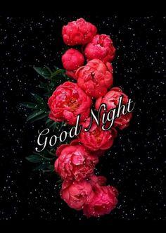 Sweet Night, Good Night Image, Good Morning, Maya, Raspberry, Ganesh, Feelings, Quotes, Buen Dia