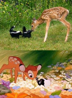 Bambi and Flower. <3