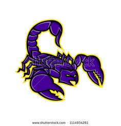 Mascot icon illustration of a scorpion, a predatory arachnid of the order Scorpiones, with sting in it's tail or venomous stinger about to strike on isolated background in retro style. Retro Illustration, Bugs And Insects, Retro Style, Retro Fashion, Royalty Free Stock Photos, Pictures, Image, Scorpion, Photos