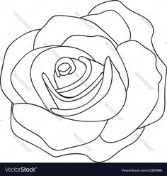 Vector image of Rose line drawing image Vector Image, includes pattern, retro, design, drawing & sketch. Illustrator (.ai), EPS, PDF and JPG image formats.