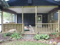Dog kennel ieads