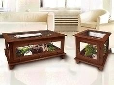 Reptile cage coffee and end table (Geckos and large snake)