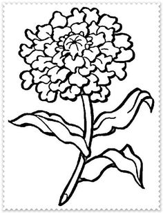 Brilliant Picture of Flowers Coloring Pages . Flowers Coloring Pages Carnation Flower Coloring Page Free Printable Coloring Pages Printable Flower Coloring Pages, Garden Coloring Pages, Animal Coloring Pages, Free Coloring Pages, Coloring Books, Coloring Sheets, Rose Flower Colors, Marigold Flower, Colorful Flowers