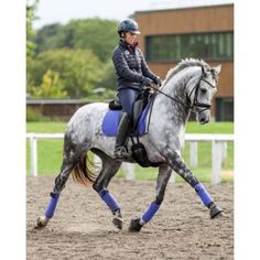 Charlotte Dujardin riding in the fabulous new colour Blueberry Dressage Square set!!!