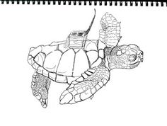 Art is ... Art & Math Coloring Loggerhead Sea Turtle (3 pages)The Loggerhead Turtle is found worldwide and considered endangered. This is my original black and white drawing taken from a photo, showing the solar radio tracker used to follow the sea turtle's journey.