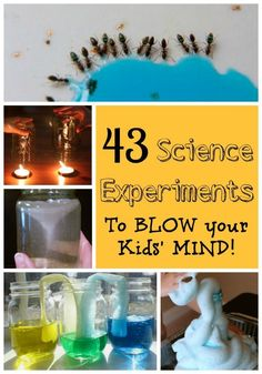 Simple but AMAZING science experiments for kids! These are awesome and almost magical! AND EASY!