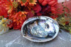 Large Abalone Shell Incense Offering Goddess Salt Dish Altar Decoration by HoneyVineMagickals on Etsy