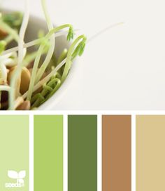 sprouting tones || bright and earthy Would look nice for our new living room. These colors are good for eyes too.