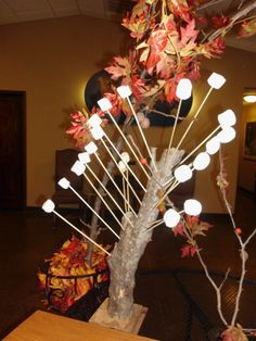 Marshmallow Tree for an indoor Smores Bar.  Drill holes into a sturdy branch, attached to a base. Stick marshmallows onto skewers.
