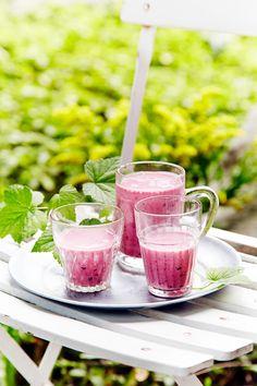 Raikas mustaherukkasmoothie on hyvä aamu- tai välipala. Tuna, Panna Cotta, Smoothie, Fish, Meat, Vegetables, Ethnic Recipes, Happiness, Drink