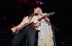 Anselmo and Steele