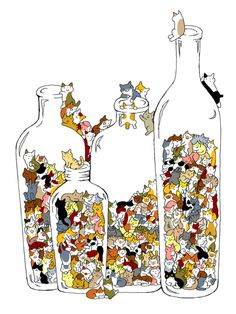 Cats in bottles