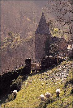 in Conques (France)
