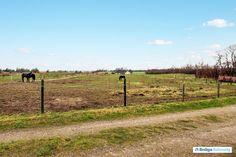 Nørgårdsvej 18, Biersted, 9440 Aabybro - Skøn beliggende ejendom med dejlig natur. #landejendom #aabybro #selvsalg #boligsalg #boligdk