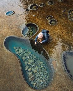 Mesmerized by the beauty of nature with these tidal pool at Botanical Beach Vancouver British. Mesmerized by the beauty of nature with these tidal pool at Botanical Beach Vancouver British Columbia Canada (Picture by: Vancouver Island, Vancouver City, Voyager Loin, Tide Pools, Destination Voyage, Philippines Travel, Beach Photos, British Columbia, Columbia Travel