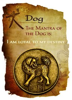 CHINESE YEAR OF THE DOG. Get in-depth info on the Chinese Zodiac Dog personality & traits @ http://www.buildingbeautifulsouls.com/zodiac-signs/chinese-zodiac-signs-meanings/year-of-the-dog/